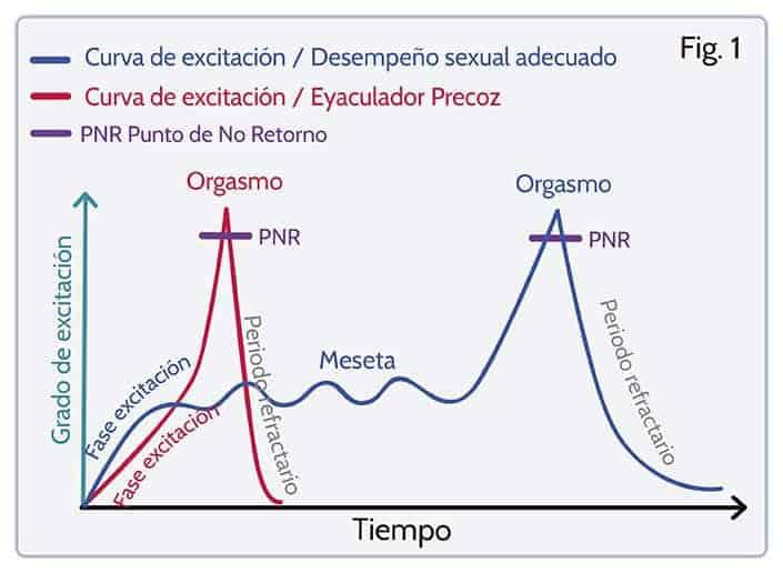 curva de excitación de alguien que sufre eyaculación precoz