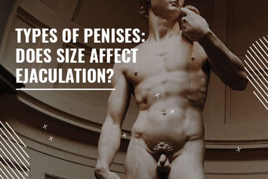types of penises